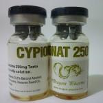 cypionat 250